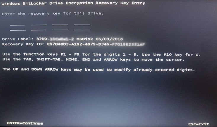 Windows Bitlocker Drive Encryption Recovery Key Entry screen