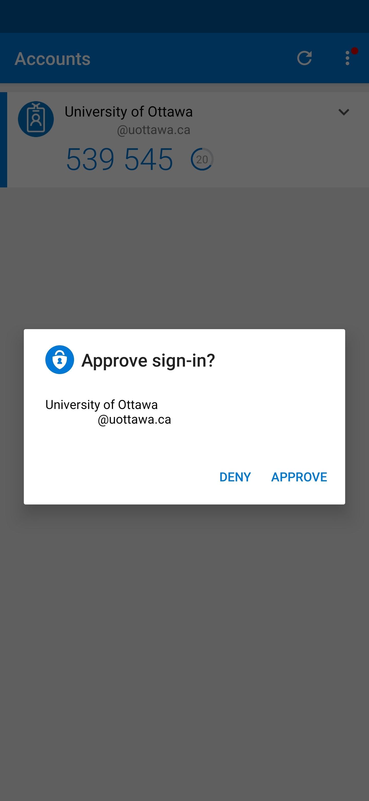 Telephone screenshot of MFA Approve screen